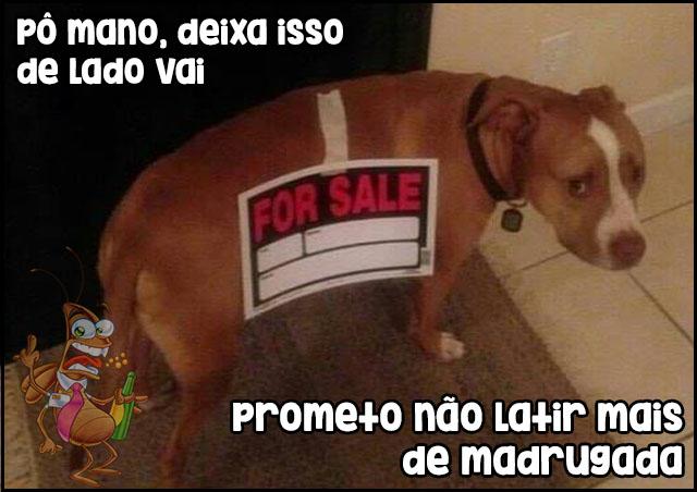 Cachorro a venda