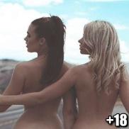 Click do dia #78